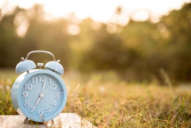 Sveglia sul sole dell'erba di mattina