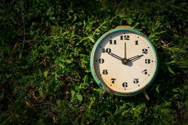 Sveglia vintage su uno sfondo di erba verde.