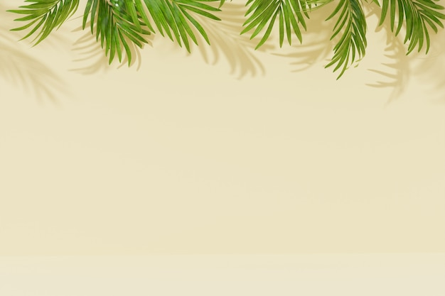 Svuoti il fondo della stanza con foglia di palma e l'ombra sulla parete. rendering 3d.