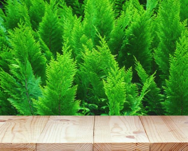 Svuoti la tavola di legno su uno sfondo naturale verde vago