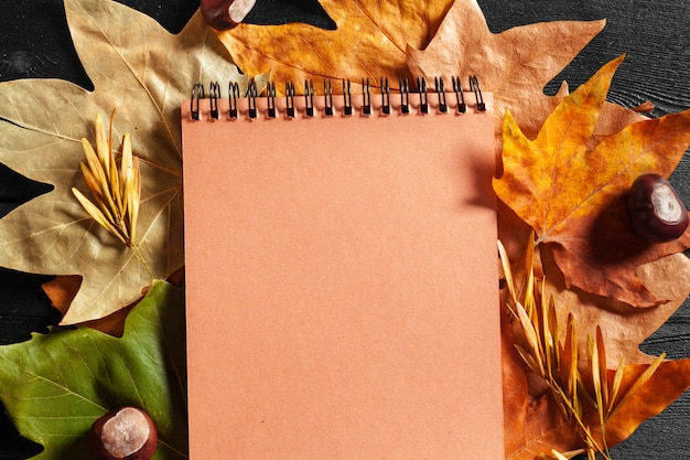 Taccuino in bianco circondato dalle foglie di autunno