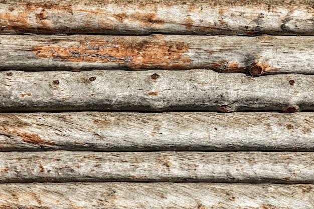 Tagliare tronchi di legno