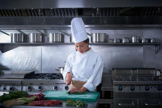 Taglio del ritratto della donna del cuoco unico alla cucina