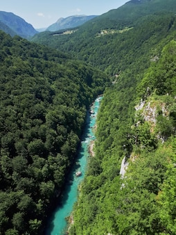 Tara river canyon nel montenegro