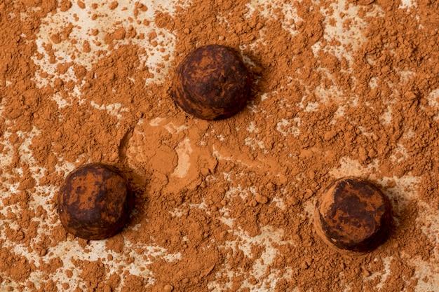 Tartufo al cioccolato in polvere di cacao