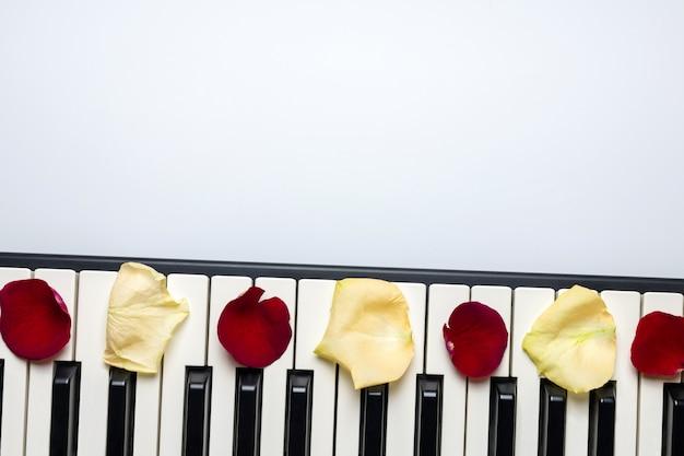 Tasti del piano con i petali del fiore della rosa rossa e bianca, vista isolata e superiore, spazio della copia.