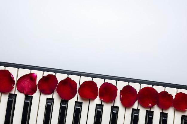 Tasti del piano con i petali del fiore della rosa rossa, vista isolata e superiore, spazio della copia.