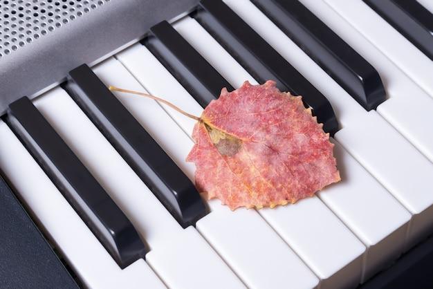 Tasti di pianoforte musicali e foglie di autunno