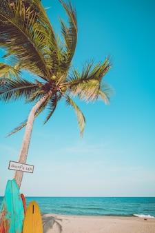 Tavola da surf d'annata con la palma sulla spiaggia tropicale di estate. tonalità di colore vintage