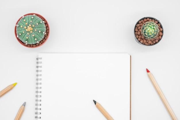 Tavola dell'ufficio con il cactus, il taccuino e la matita, vista superiore, disposizione piana con fondo bianco
