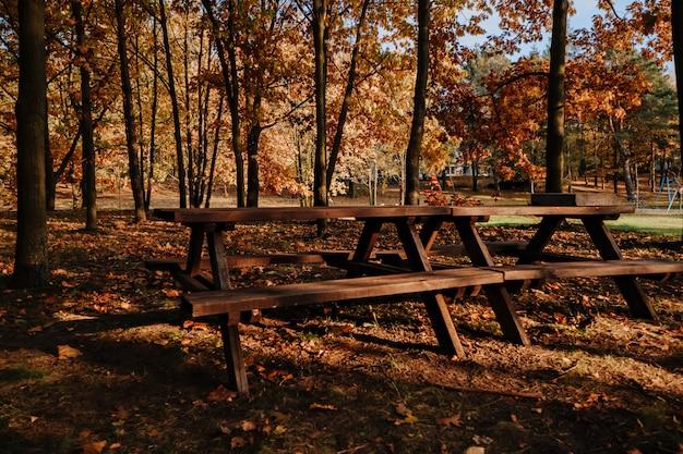 Tavolo da picnic nel parco d'autunno