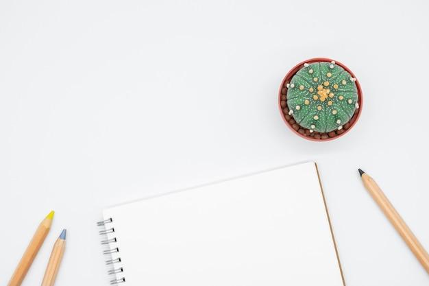 Tavolo da ufficio con cactus, smartphone, notebook, occhiali e matita