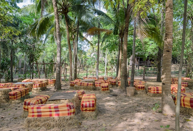 Tavolo e sedie da esterno fanno uso della paglia di riso