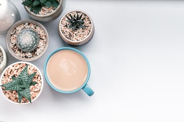 Tazza di caffè caldo con cactus su oggetti di decorazione di ceramica