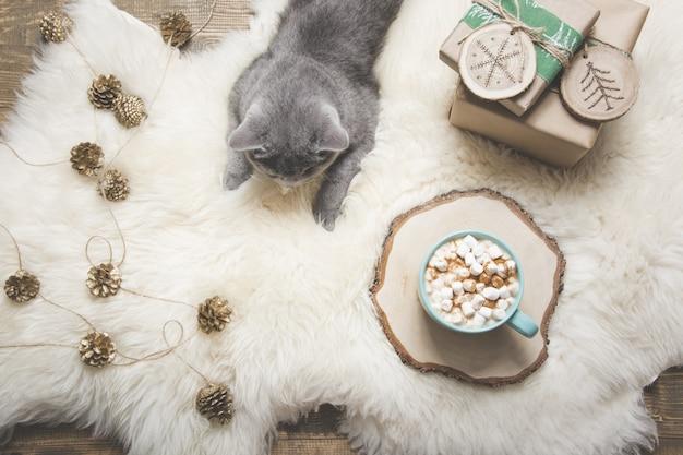 Tazza di caffè, gatto britannico, regali fatti a mano. riposa a casa. vista dall'alto. copia spazio. immagine opaca.