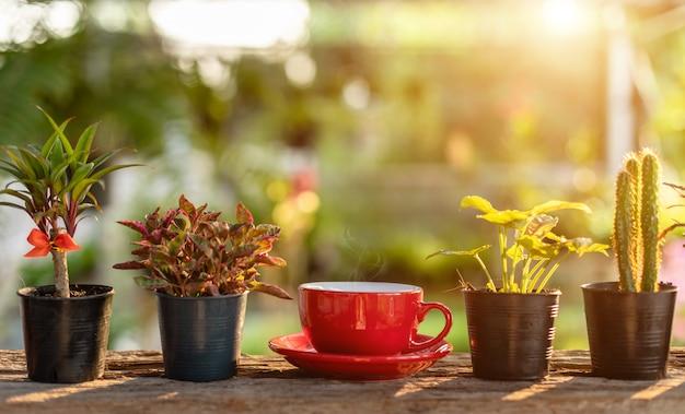 Tazza di caffè rossa sulla luce di legno della natura di mattina della tavola in giardino