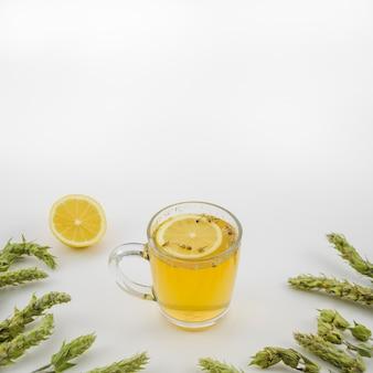 Tazza di tè al limone decorata con erbe su sfondo bianco