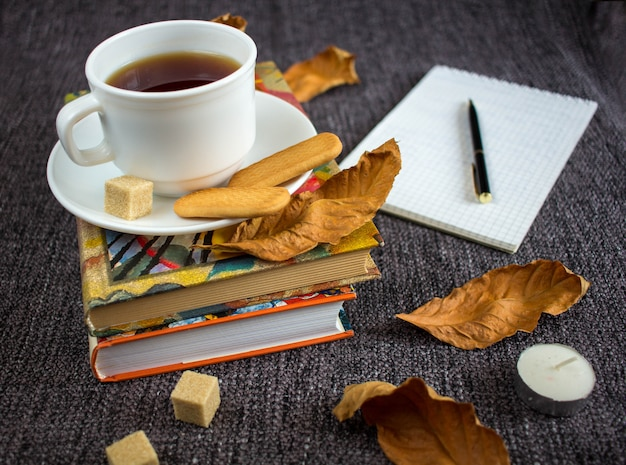 Tazza di tè caldo profumato tra le foglie gialle su un plaid.