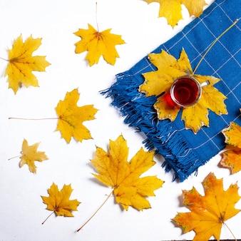 Tazza di tè con una coperta e foglie su bianco