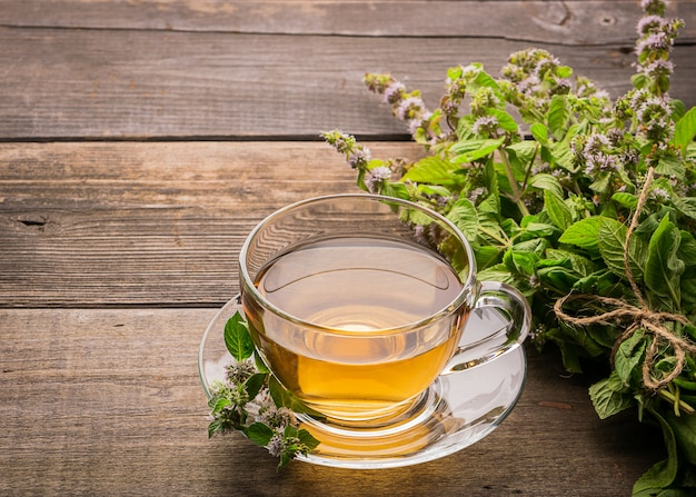 Tazza di tè fresco con le foglie di menta della melissa su un fondo rustico di legno. bevanda a base di erbe curative. cornice orizzontale.