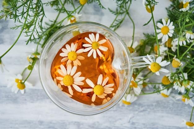 Tazza di tisana naturale, con fiori di camomilla su grigio