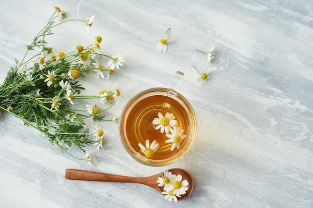 Tazza di vetro di camomilla, fiori di camomilla, cucchiaio di legno su grigio
