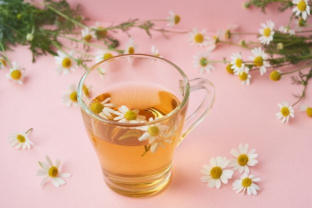 Tazza di vetro di tisana naturale, fiori di camomilla farmacia sul rosa