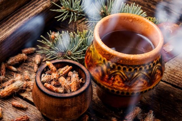Tè con gemme di pino
