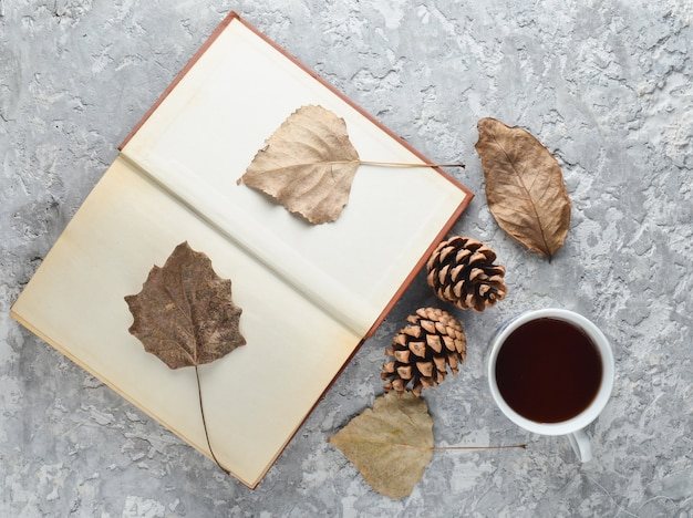 Tè durante la lettura di un libro. tè, un libro, foglie cadute, dossi su un tavolo di cemento. atmosfera autunnale invernale per la lettura di una nuova storia. erbario da foglie secche. vista dall'alto. disteso.