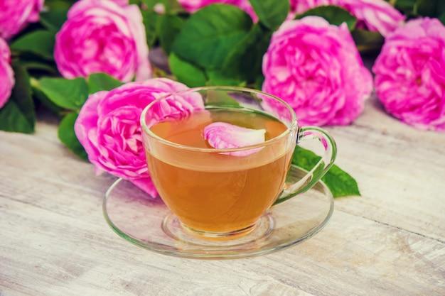 Tè, rosa tea, rosa, messa a fuoco selettiva. natura.