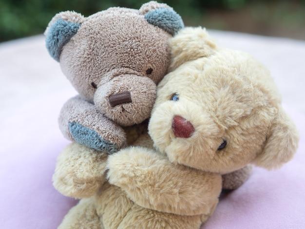 Teddy bear love for valentine concept