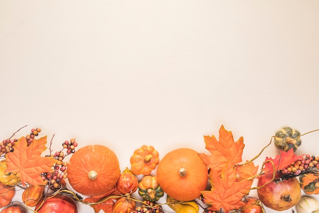 Telaio di cibo vista dall'alto con foglie