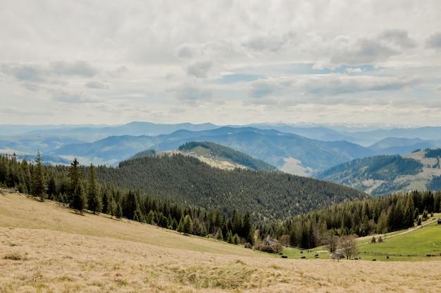 Tempo drammatico di stagione estiva della cresta del paesaggio di vista superiore delle montagne carpatiche con cielo blu nuvoloso