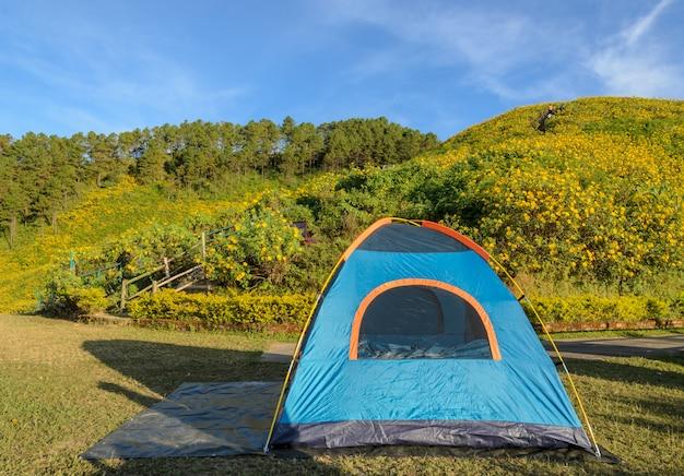 Tenda da campeggio con la bella scena della natura della montagna del giacimento selvaggio del girasole messicano