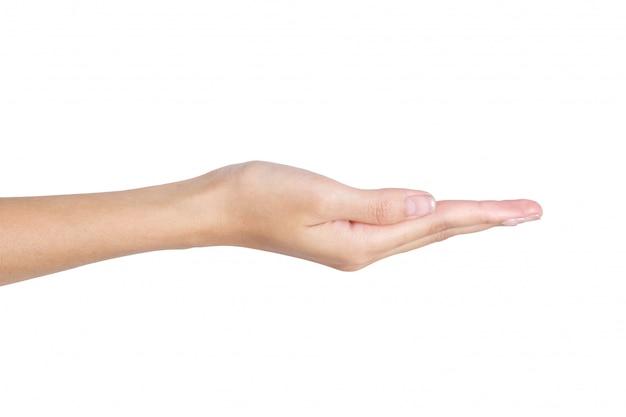 Tenuta vuota della mano della donna con spazio aperto isolato su bianco
