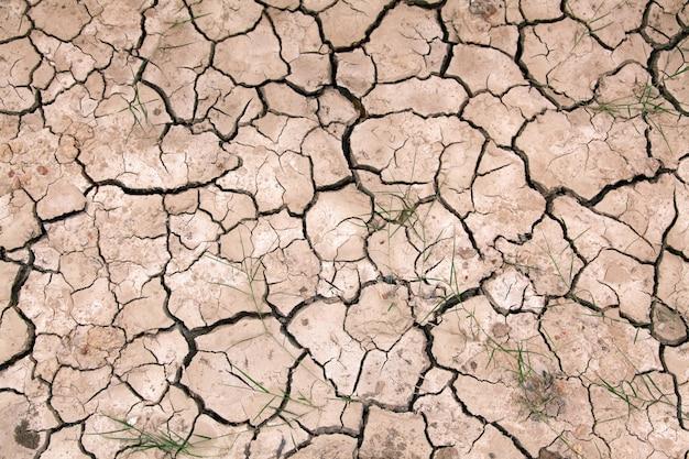Terra incrinata asciutta che riempie la struttura