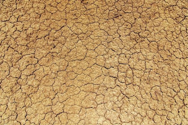 Terra incrinata durante una siccità.