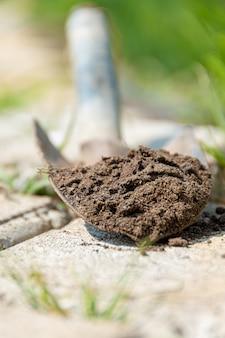 Terra su una piccola pala. lavorare in giardino.