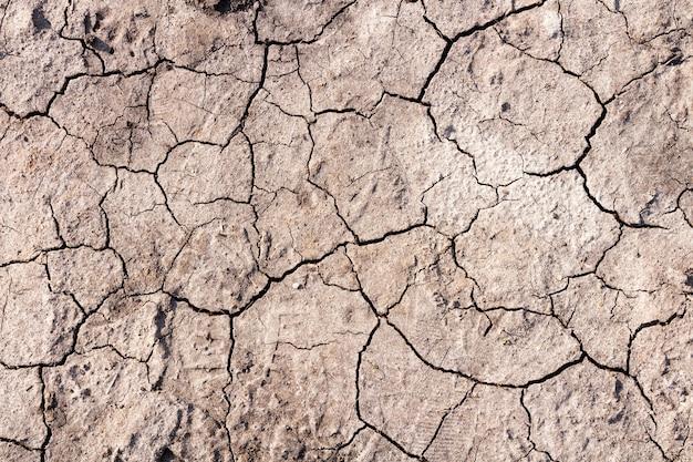 Terreno asciutto con crepe. concetto di riscaldamento globale.