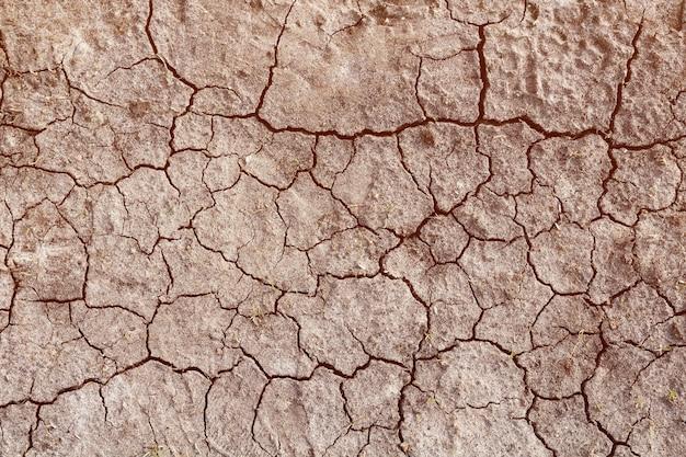 Terreno asciutto con crepe. il concetto di siccità e riscaldamento globale