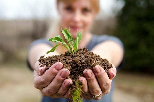 Terreno fresco con nuova piccola pianta verde germogliare nelle mani di donna