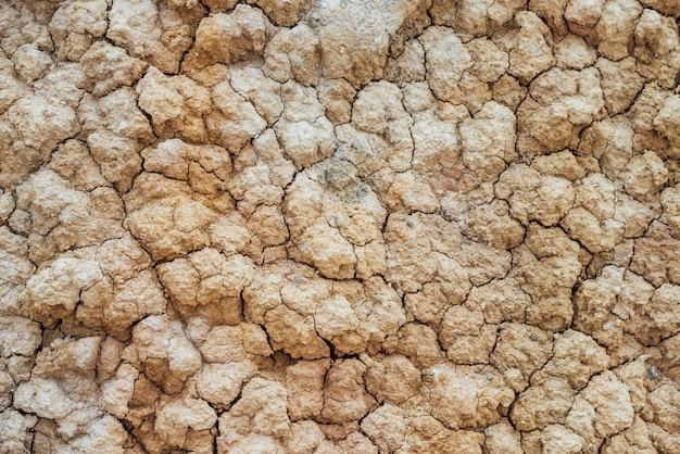 Terreno incrinato secco.