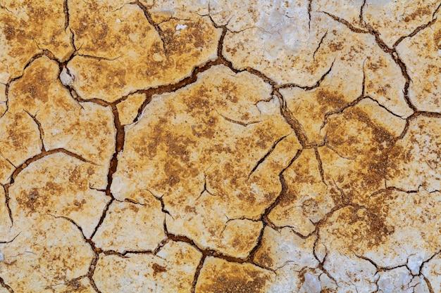 Terreno morto e crepato