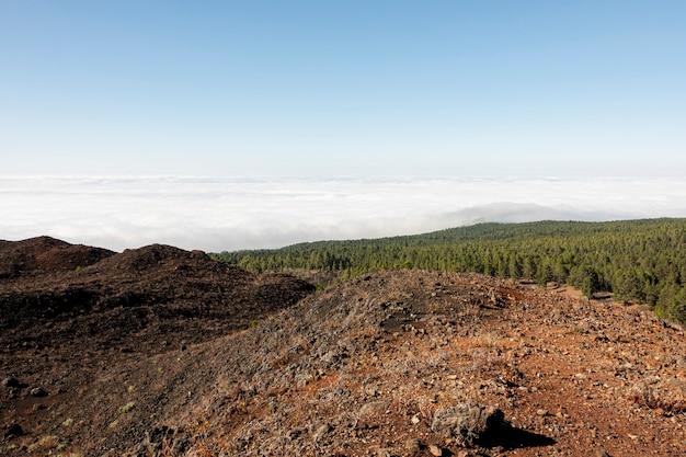 Terreno vulcanico rosso con legno sullo sfondo