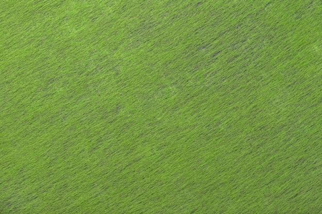 Tessuto scamosciato verde chiaro