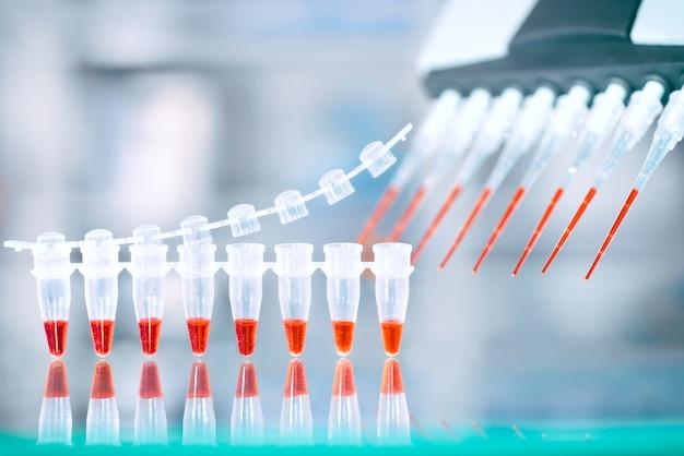 Test di amplificazione del dna e miscela di reazione in pipetta automatica multicanale,