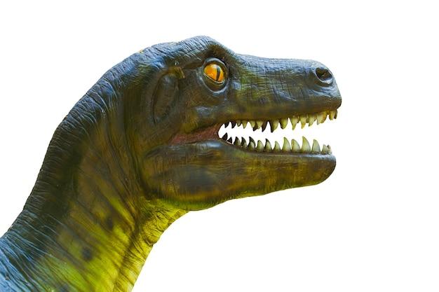 Testa di dinosauro del primo piano isolata su bianco