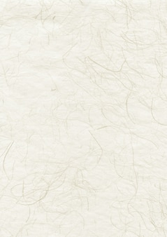 Texture di carta riciclata natura