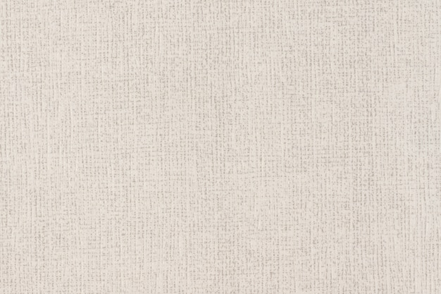 Texture di plastica bianca e grigia