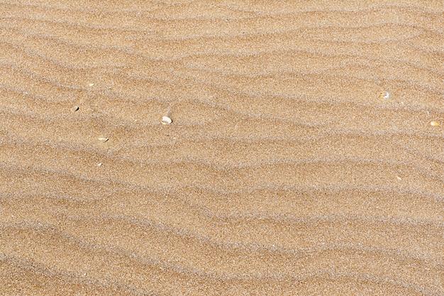 Texture di sabbia di colore rosso con un motivo a forma di bue in riva al mare. sfondo di concetto, trama